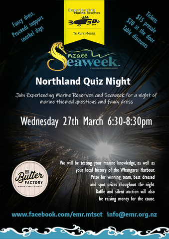 Full page poster quiz night